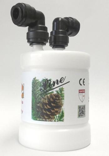 Pine_4
